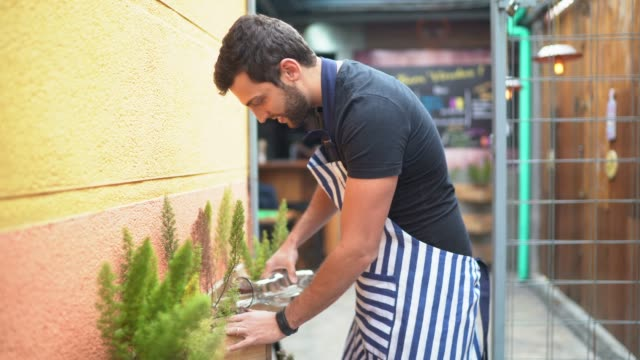 portrait of young man watering plants - pardo brazilian stock videos & royalty-free footage
