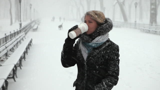 ms portrait of young woman drinking coffee in park in blizzard / new york city, new york, usa - heißes getränk stock-videos und b-roll-filmmaterial