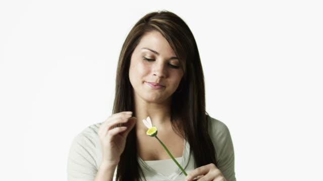 vidéos et rushes de ms portrait of young woman picking flower apart against white background / orem, utah, usa - orem