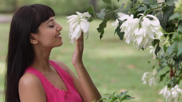 vídeos y material grabado en eventos de stock de ms portrait of young woman smelling flowers on tree / singapore - sólo mujeres jóvenes