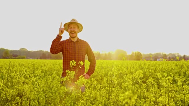 portrait smiling,confident farmer gesturing number 1 in sunny,idyllic,rural canola field,real time - number 1 stock videos & royalty-free footage
