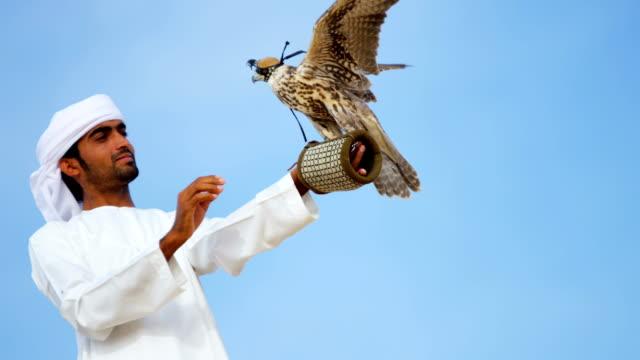 vídeos y material grabado en eventos de stock de portrait trained falcon balanced arabic male falconers glove - halcón