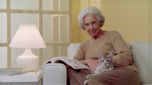 vidéos et rushes de ms portrait woman sitting on couch and doing crossword puzzle while holding maine coon cat - canapé