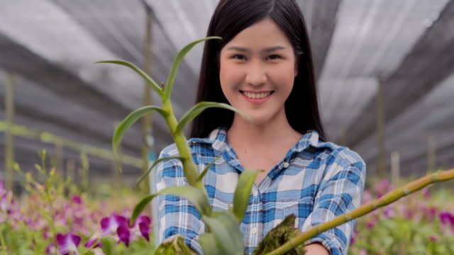 portrait young teenage girl smiling and working looking at camera in her garden harvesting orchid flower.farming,gardening,agriculture,harvesting and people,organic farming,plant care and protection.technology concept,video: diverse portrait - tropical flower stock videos & royalty-free footage