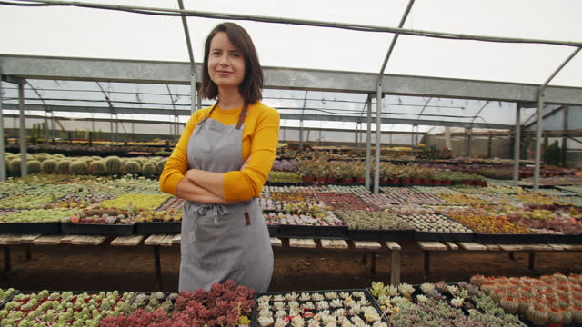ts portrait young woman working in a succulent nursery - apron stock videos & royalty-free footage