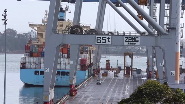 vídeos y material grabado en eventos de stock de ports of auckland logo is displayed on the top of the ports of auckland building cranes and straddle carriers operate as shipping containers stand at... - pórtico automotor