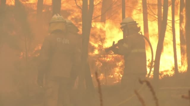 portuguese firefighters continue to battle wildfires in a central region where dozens of people were killed in huge blazes in 2017 as fears mount... - environmental damage stock videos & royalty-free footage