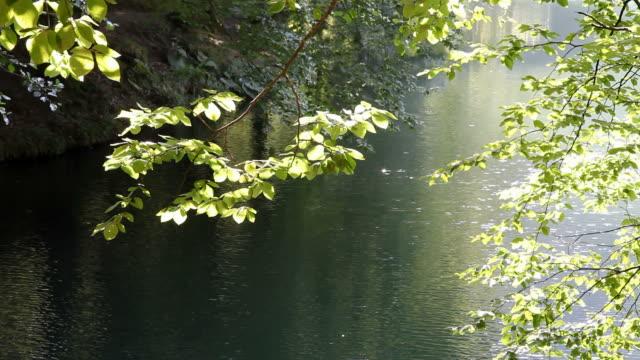 Positive Emotion at lake