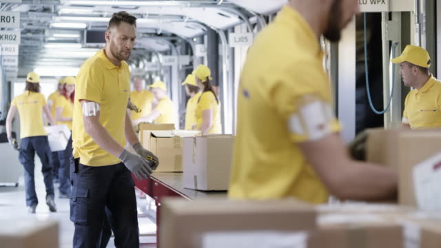 ds postal workers sorting parcels on the conveyor belt - belt stock videos and b-roll footage