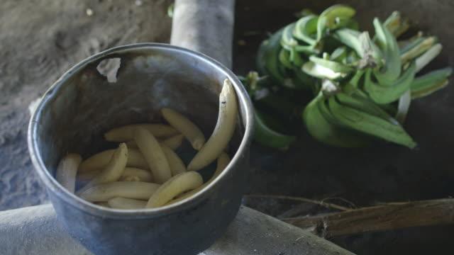 vídeos de stock, filmes e b-roll de ms pot full of peeled plantains sits on top of smoking logs green skins discarded next to it on ground / checherta village, peru - banana de são tomé