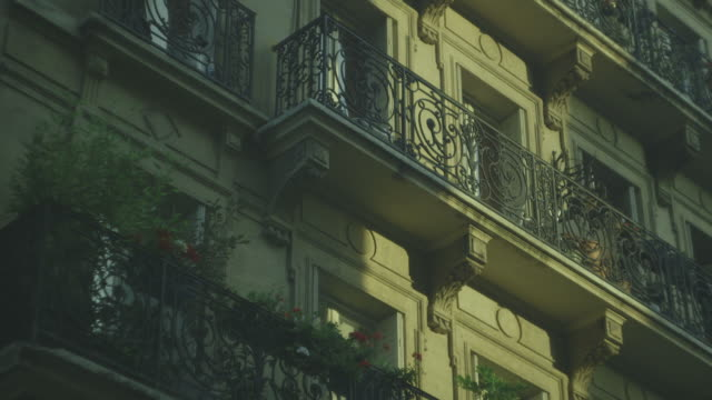 Pot plants grace the balconies of a handsome, quintessentially Parisian residential building, France.