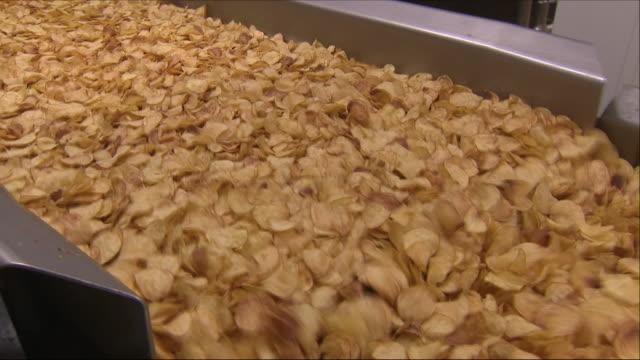 vidéos et rushes de potato chip production - pomme de terre