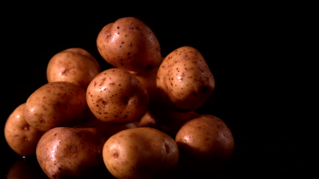 potato falling on pile of potatoes - raw potato stock videos & royalty-free footage