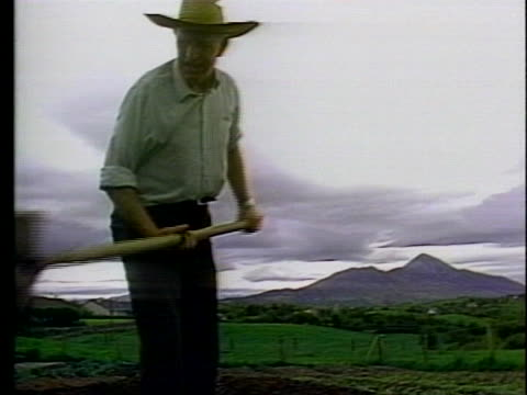 potato farmer broady garritty digs in his field next to a mass grave from ireland's potato famine. - business or economy or employment and labor or financial market or finance or agriculture stock videos & royalty-free footage