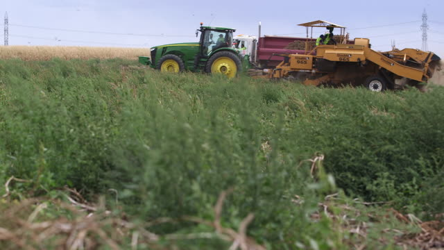 potato harvester moves thru frame r-l - wiese stock videos & royalty-free footage