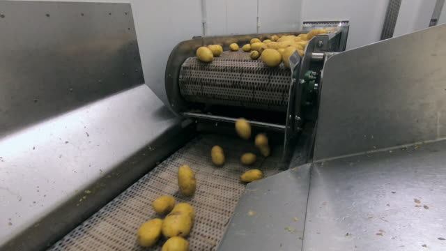 potatoes are washed in factory machinery - generic location stock videos & royalty-free footage