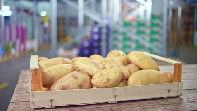 ds potatoes in a wooden crate on a table in the fresh produce warehouse - raw potato stock videos & royalty-free footage