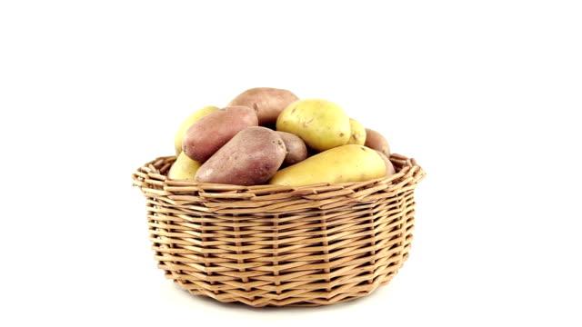 vidéos et rushes de pommes dans le panier - pomme de terre rouge