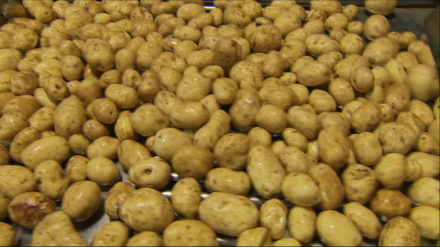 potatoes on a  factory production line - raw potato stock videos & royalty-free footage