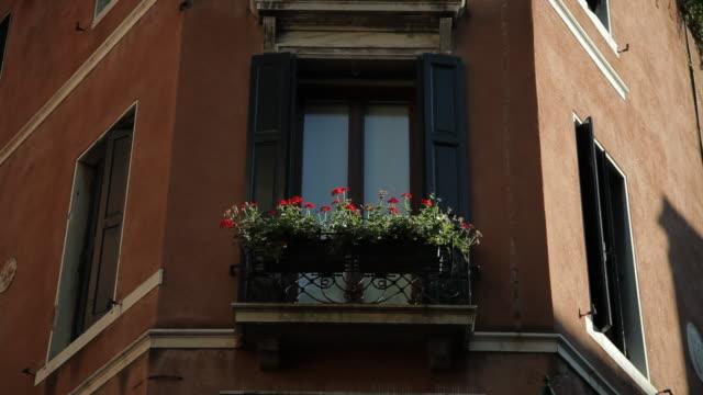 vídeos y material grabado en eventos de stock de mh la ld potted flowers in windowsill / venice, italy - balcón