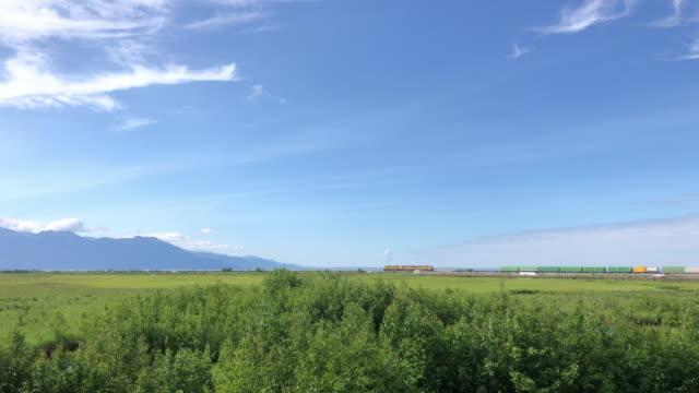 potter marsh bird sanctuary, anchorage, alaska, usa - anchorage alaska stock videos & royalty-free footage