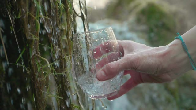 pouring a glass of water from crystal clear mountain water - spring flowing water video stock e b–roll