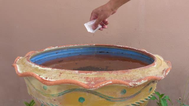 汚れた水で植木鉢に洗剤を注ぐ - 虫刺され点の映像素材/bロール