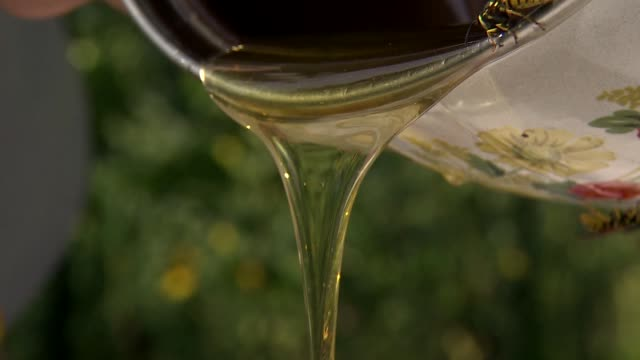 pouring honey into jar - wirbelloses tier stock-videos und b-roll-filmmaterial