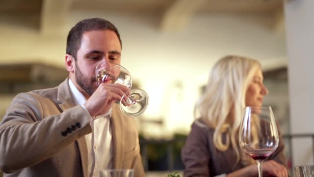 グラスに赤ワインを注ぐ - ブドウ栽培点の映像素材/bロール