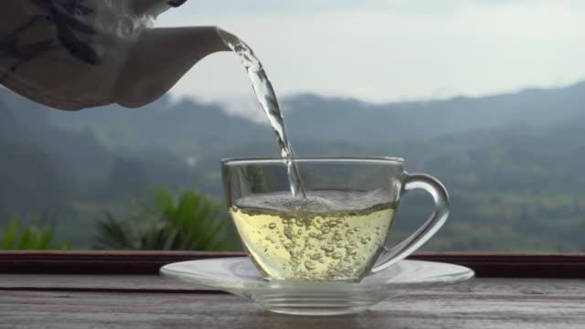 pouring tea on nature view truck shot - teekessel stock-videos und b-roll-filmmaterial
