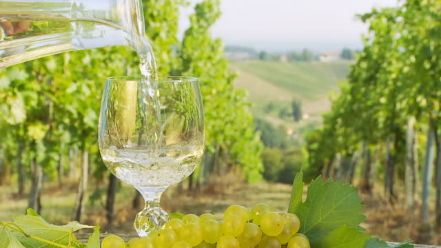 HD SLOW MOTION: Pouring White Wine In Vineyard