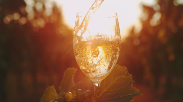 vídeos de stock e filmes b-roll de slo mo pouring white wine into a glass at sunset - juicy