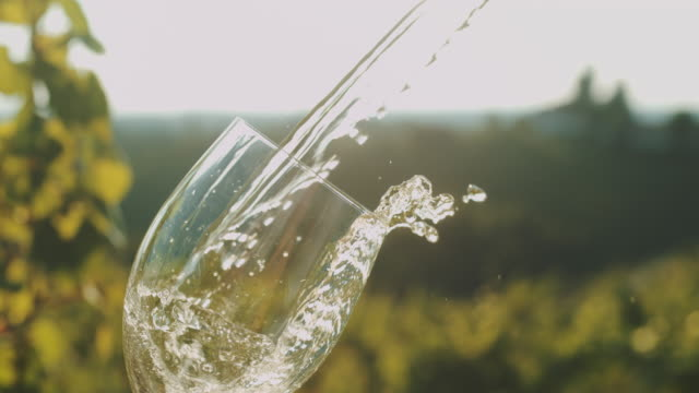 slo mo pouring white wine into the glass - white wine stock videos & royalty-free footage