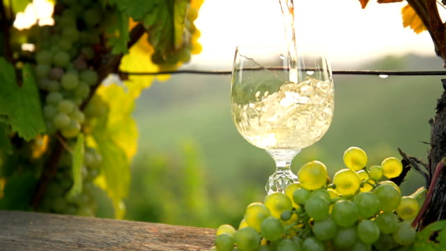 HD SUPER SLOW-MO: Pouring White Wine