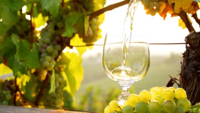 vídeos de stock e filmes b-roll de hd super em câmara lenta: derrame de vinho em sunny vinha - garrafa