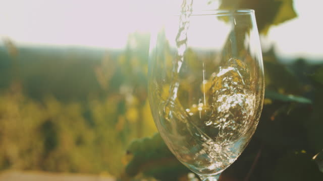 SLO MO Pouring wine in the vineyard