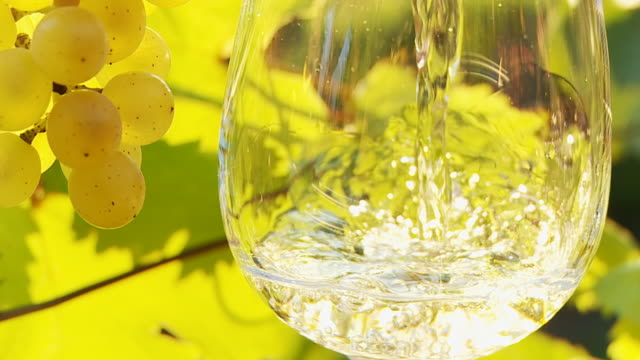 hd slow motion: pouring wine in vineyard - white wine stock videos & royalty-free footage