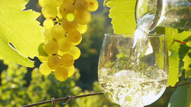 hd slow motion: pouring wine into glass - white wine stock videos & royalty-free footage