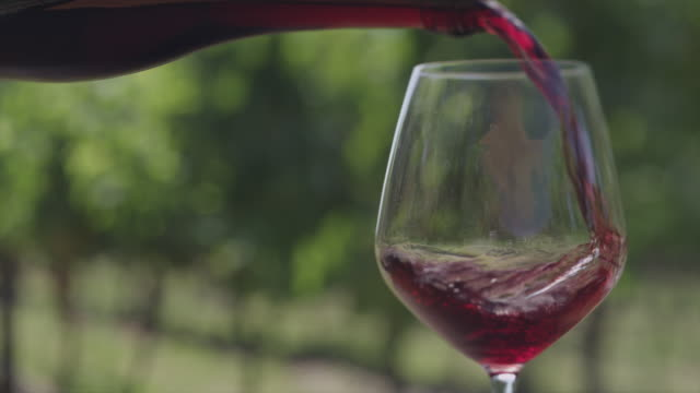 pouring wine - bicchiere da vino video stock e b–roll