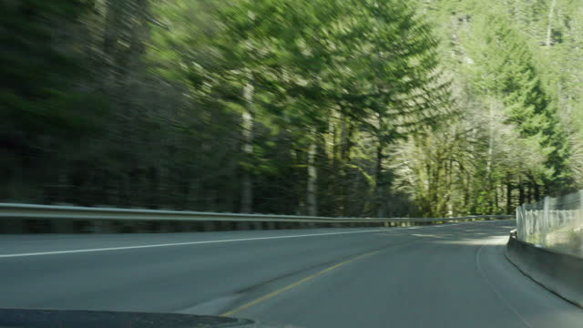 vidéos et rushes de pov: driving around curves and down hills in beautiful sunshine in the forest - portland, oregon - portland oregon