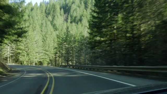 pov: driving downhill along a curving highway through hilly forestland in the sun - portland, oregon - portland oregon stock-videos und b-roll-filmmaterial