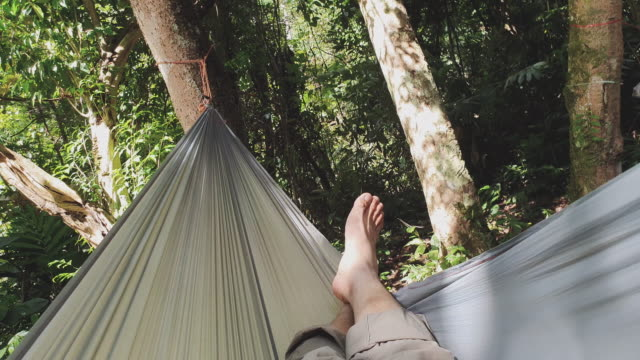 vídeos de stock e filmes b-roll de pov of people sleep on hammock in rainforest while trekking - ponto de vista