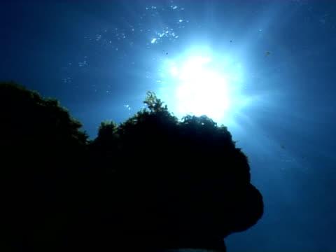 pov under overhang and starbursts, fernando de noronha, brazil - atlantikinseln stock-videos und b-roll-filmmaterial