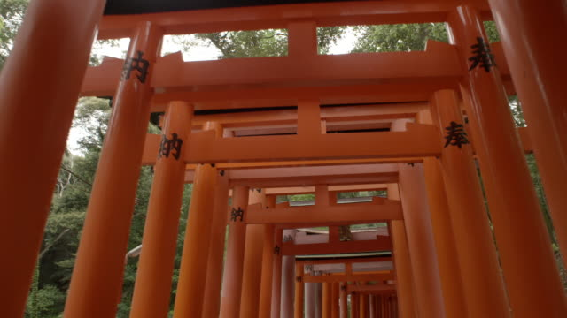 povs fushimi inari shrine - orange colour stock videos & royalty-free footage