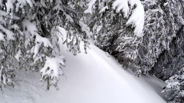 powder skiing backcountry - powder snow stock videos & royalty-free footage