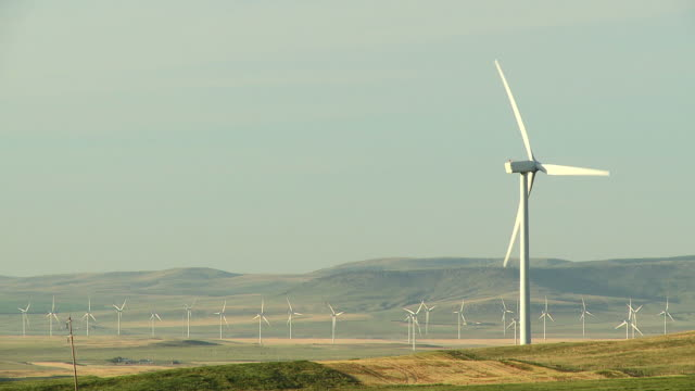 hd: power generating windmills - earth day stock videos & royalty-free footage