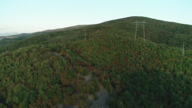power line in the forest - power cable stock videos & royalty-free footage