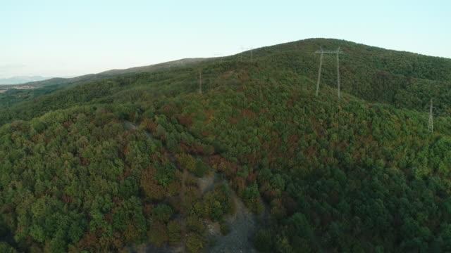 森の中の電力線 - ワイヤー点の映像素材/bロール