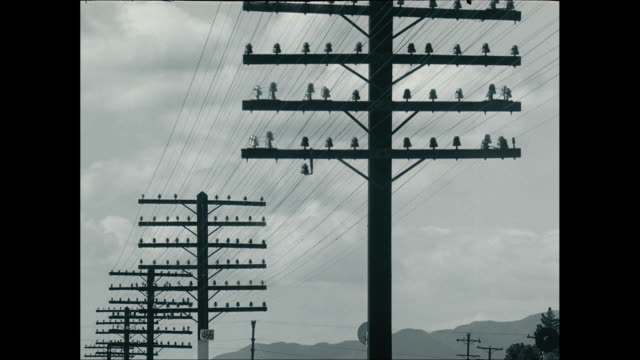 ms power lines against clouds / united states - linea telefonica video stock e b–roll
