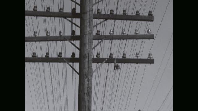 cu tu power lines against sky / united states - linea telefonica video stock e b–roll